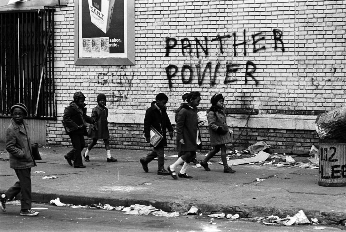 pantherpow.jpg
